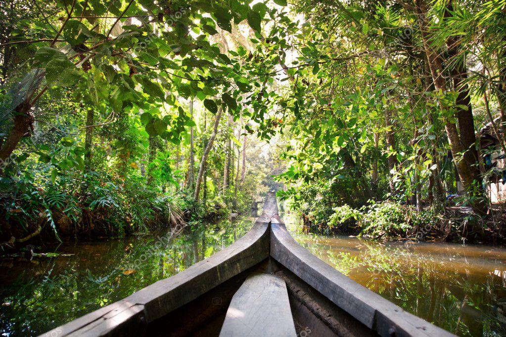 Фотообои Boat in backwaters jungle