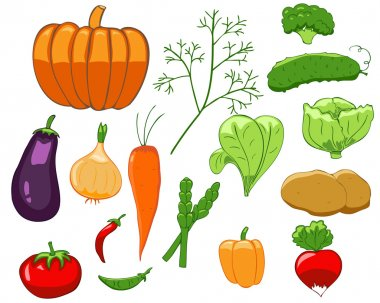 Set of colorful vegetables