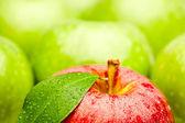 Fotografie Frische Äpfel