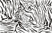Fotografie Tiger pattern background