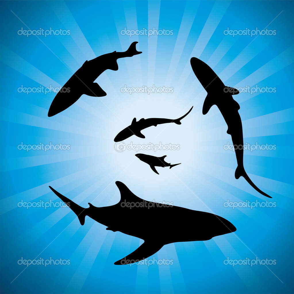 Vector sharks underwater and sunlight
