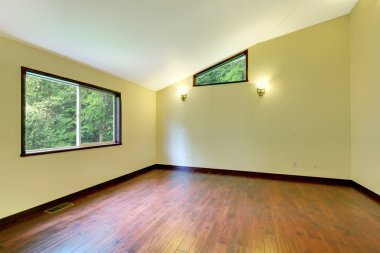 Large yellow empty room with large window and wood floor