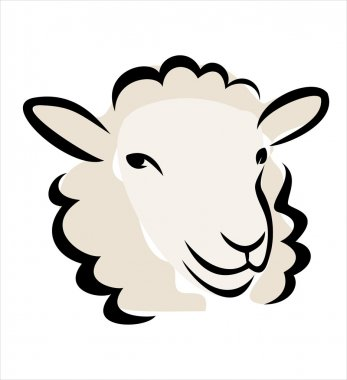 Happy sheep portrait