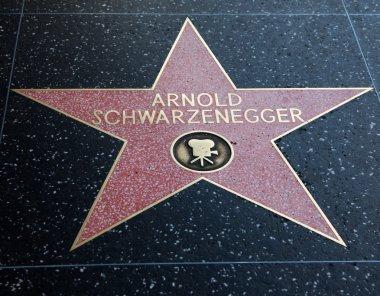 Arnold Schwarzenegger Hollywood Star