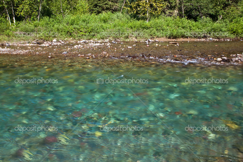 Pure Clean River Water