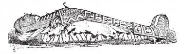 The Sarcophagus of Mummy vintage engraving