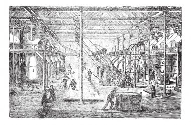 Cotton or cotton fiber whitening vintage engraving