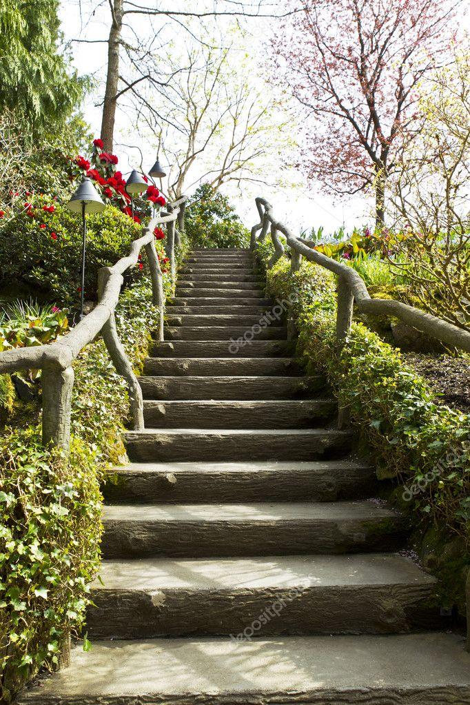 Escalier en bois dans le jardin japonais photographie for Escalier jardin bois