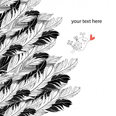 Background of feathers and birds