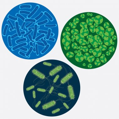 Abstract images of viruses.