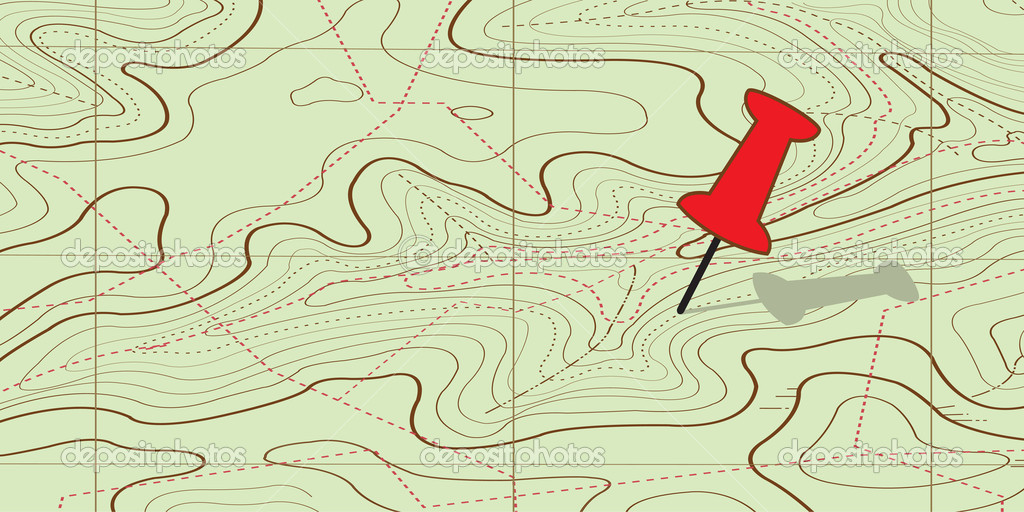 Abstract topographical map. vector