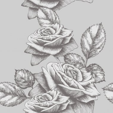 Seamless background with roses blooming, hand-drawing. Vector illustration.