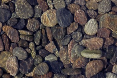Pebbles in shallow water