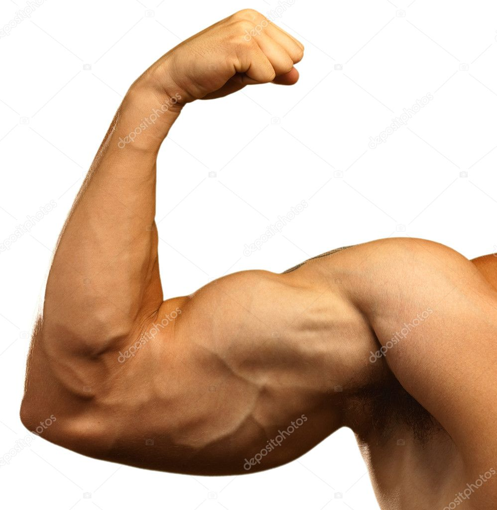 Strong biceps