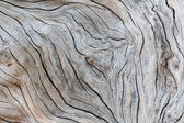 staré dřevo textury