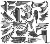 Nagy készlet vázlatok, szárnyak