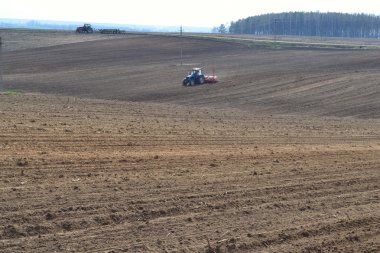 Sowing campaign in the Belarusian collective farm.