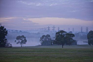 Electrical Pylons