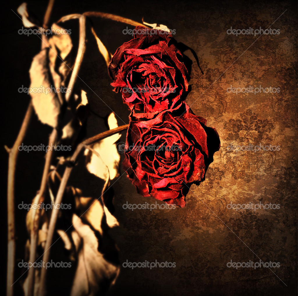 Grunge wilted roses border