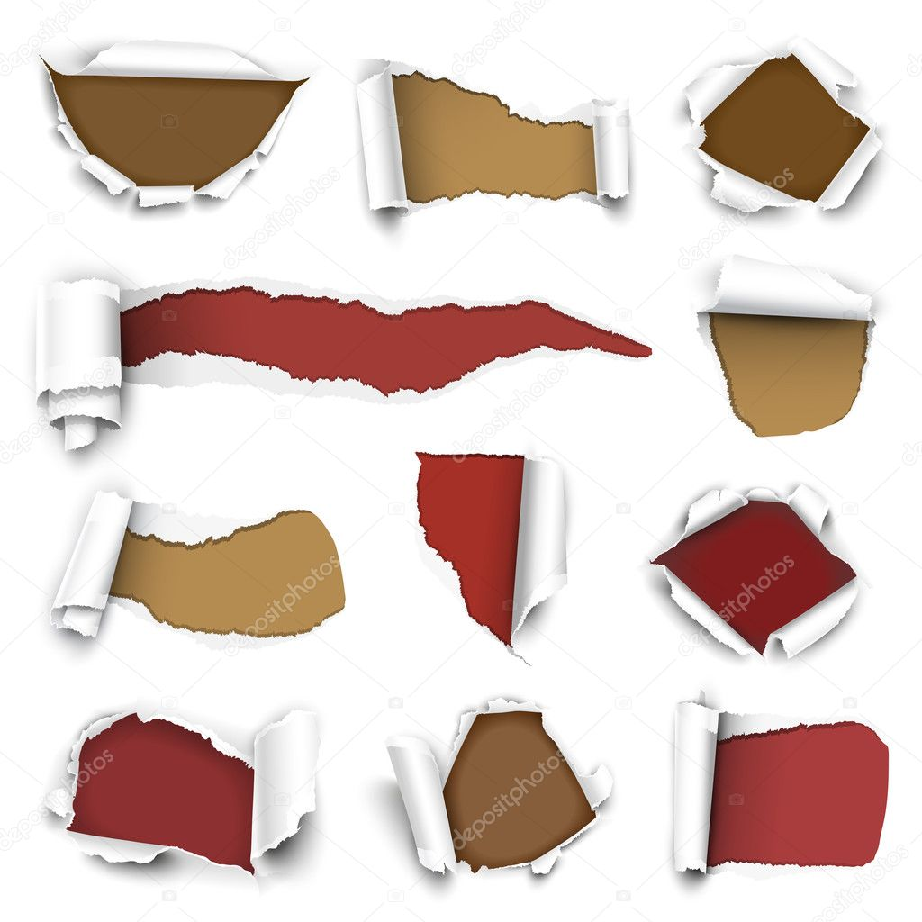 Сollection of torn paper
