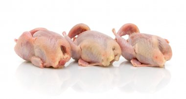 Three quail carcass on a white background