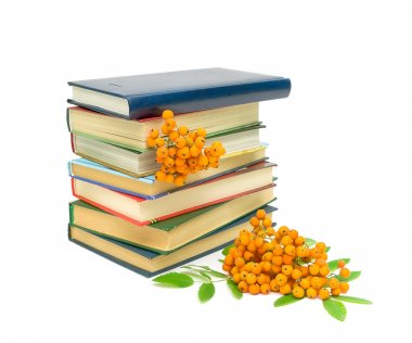 A stack of books and clusters of mountain ash