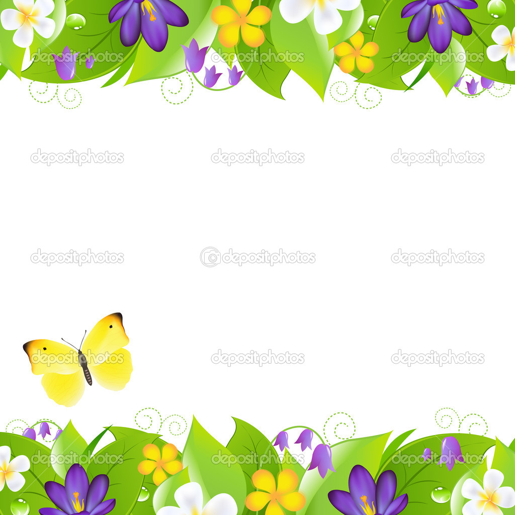 Summer Flowers Borders