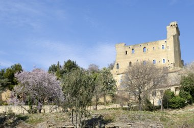 Ruined castle of Chateauneuf du Pape in Provence, France
