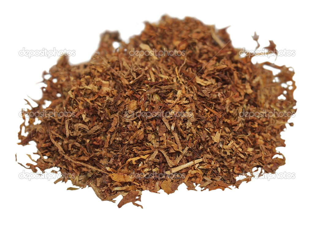 Tobacco isolated on white background, texture