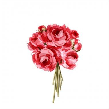 Bouquet of peonies