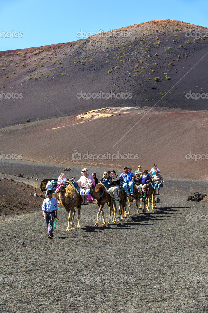 Tourists ride on camels being guided by local through the