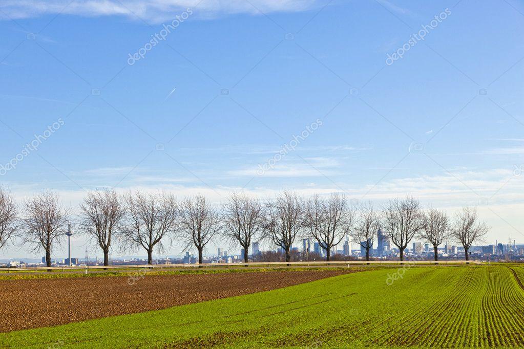 Kegelbahn Frankfurt kegelbahn mit felder und die skyline frankfurt im hintergrund