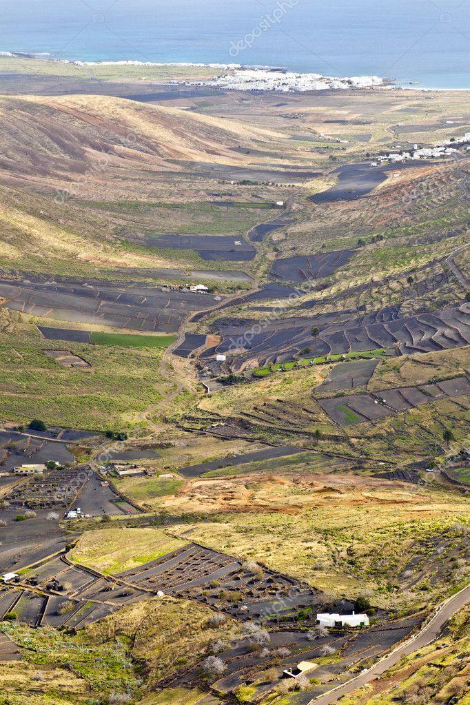 paesaggio di lanzarote, piccola cittadina con coltivazione a ...