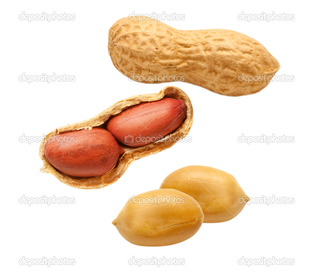 Peanuts isolated on white background
