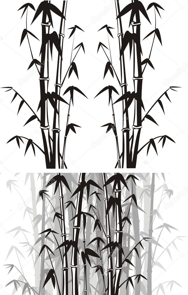 Bamboo background - black and white