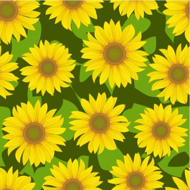 Sunflower flower seamless background