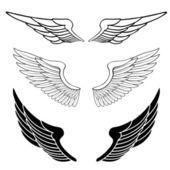 Fotografie sada křídel izolovaných na bílém