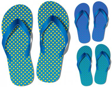 Vector set of flip flops