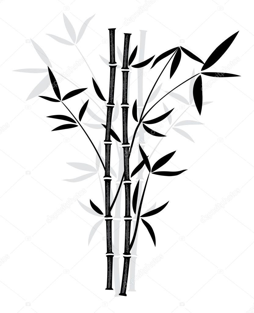 Bamboo Tree Stock Vectors Royalty Free Bamboo Tree Illustrations Depositphotos