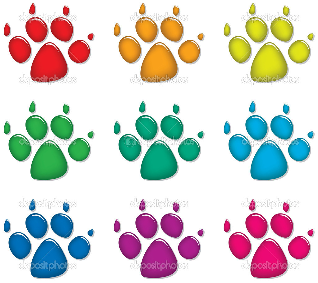 Vector set of colorful dog's foot prints