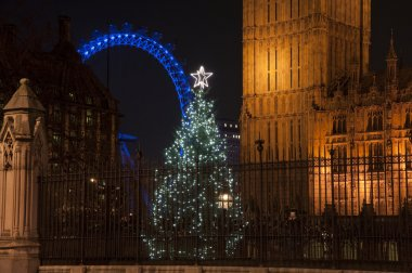 Christmas tree outside Houses of Parliament in London with Lond