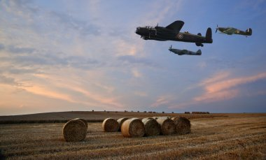 World War 2 RAF airplanes flying over lavender fields at sunset