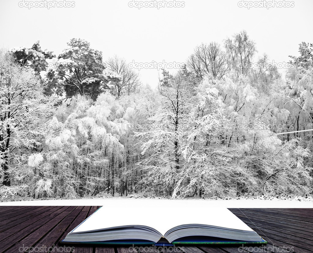 Winter wonderland scene in pages of magical book
