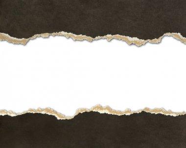 Torn paper borders
