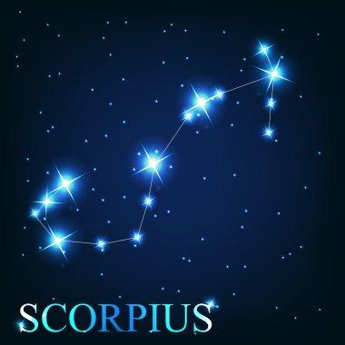 of the scorpius zodiac sign of the beautiful bright stars