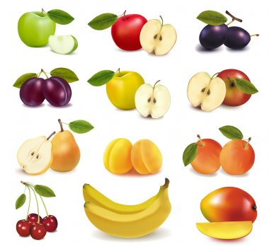 Big group of different fresh fruit. Vector. stock vector