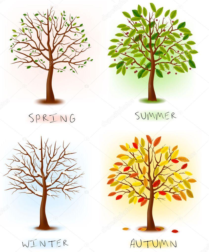 Four seasons - spring, summer, autumn, winter. Art tree beautiful for your design. Vector illustration.