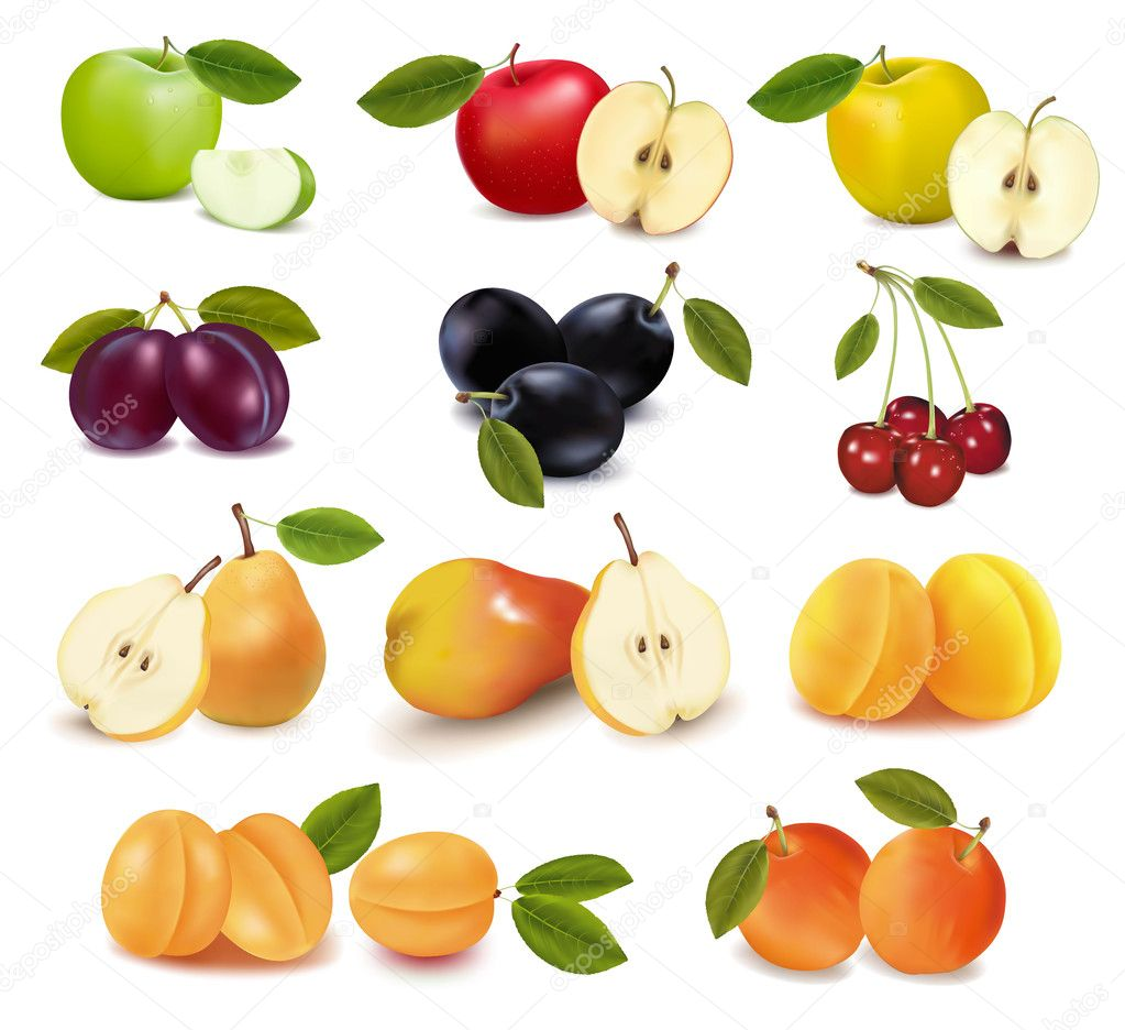 big group of different fresh fruit u2014 stock vector almoond 10042799