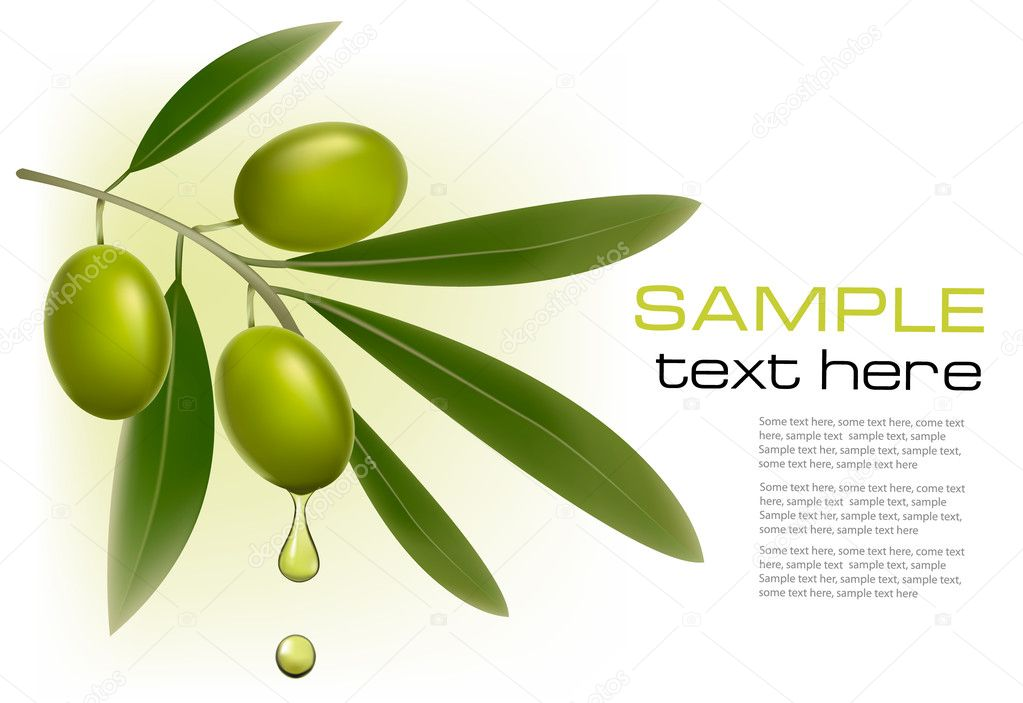 Background with green olives. Vector illustration.