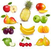 Fotografie Big group of different fruit. Vector.
